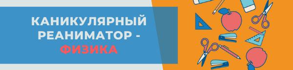 ЭКСПРЕСС-КУРС КАНИКУЛЯРНЫЙ РЕАНИМАТОР ФИЗИКА